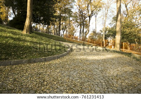 leaves falling in the autumn. Nature is really very generous. each tone of brown and yellow. cobbled roads and stairs