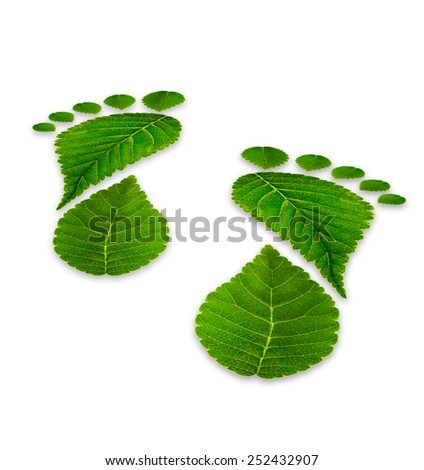 leaves footprints on a white background, relating to the environment, back view