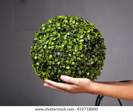 Leaves green grassy ball