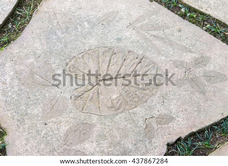 Leaves imprint in the sandstone for decoration in the small garden. - stock photo