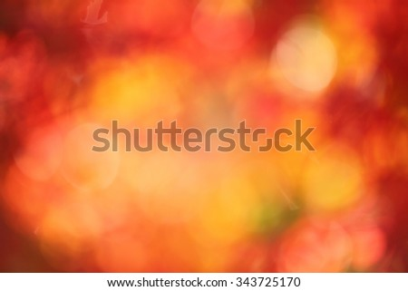 leaves in autumn as a blurry background