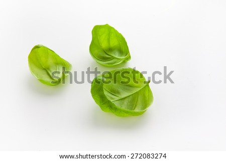 leaves of basil - stock photo