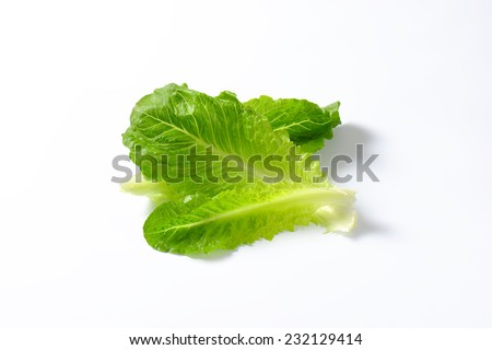 leaves of romaine lettuce on white background - stock photo