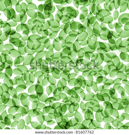 Leaves seamless tileable background - stock photo