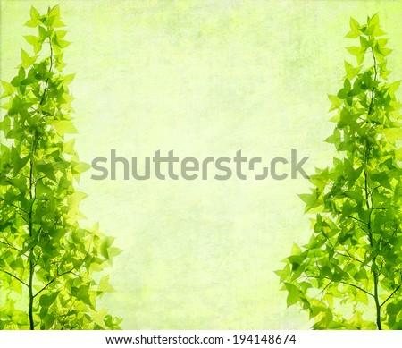 leaves tree with old grunge antique paper texture - stock photo