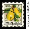 LEBANON - CIRCA 1975: A stamp dedicated to The pear is a fruit tree of genus Pyrus and also the name of the tree's edible pomaceous fruit, circa 1975. - stock photo