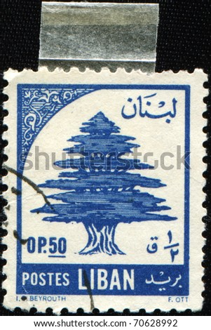 LEBANON - CIRCA 1955: A stamp printed in Lebanon shows Lebanon cedar, circa 1955 - stock photo
