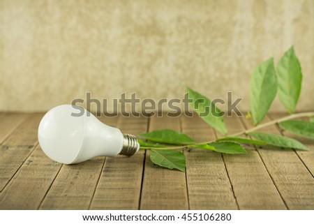 LED bulbs energy saving on wood background.Natural energy and energy saving concept. - stock photo