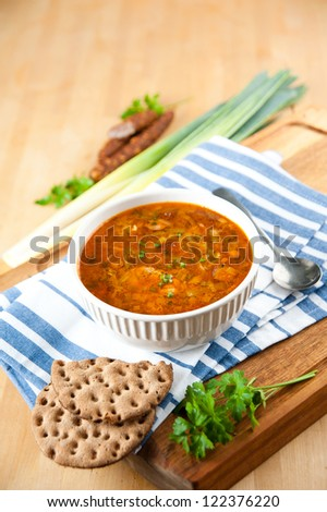 Leek, Chicken and Smocked Sausage Soup with Parsley and Paprika - stock photo