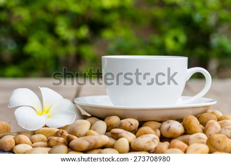 Leelavadee (Plumeria) tropical flower have white cup coffee background - stock photo