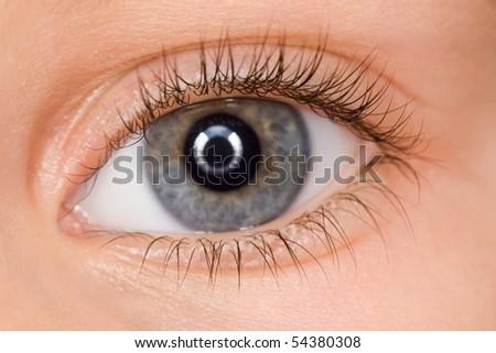 left blue eye of child with long eyelashes close up - stock photo