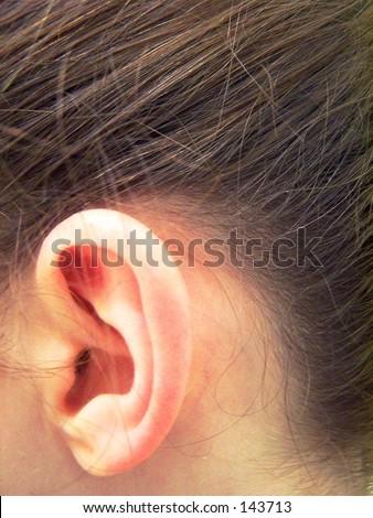 left ear - stock photo