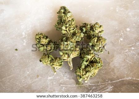 Legal cannabis buds - stock photo