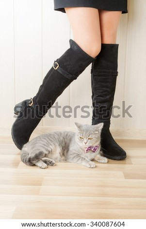 legs in boots made of suede and cat - stock photo