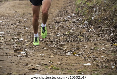 Legs male athlete running on forest trail