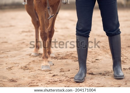 Legs of a horse and equestrian - stock photo