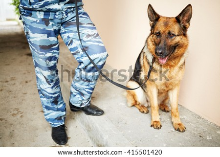 Legs of policeman in camouflage with shepherd outdoor. - stock photo