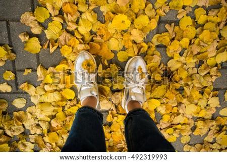 Legs on the yellow autumn leaves background.