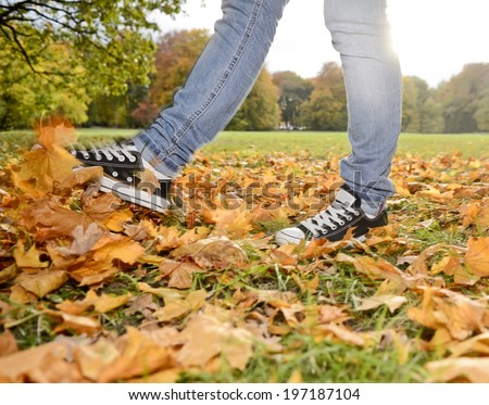 legs playing with autumn leaves - stock photo