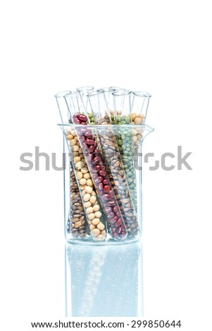 Legume with Wheat genetically modified, Plant Cell science - stock photo
