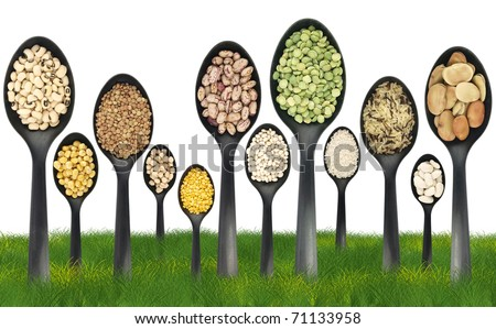 Legumes over spoons like trees on a grass field - stock photo