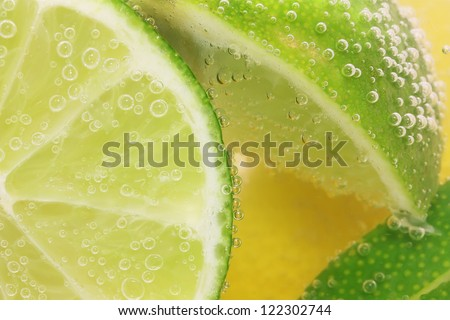 Lemon and lime slices in tonic water - stock photo