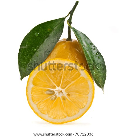 Lemon fruit with water drops close up macro isolated on a white background - stock photo