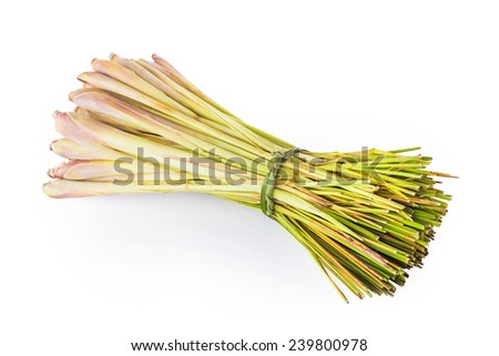 lemon grass isolated on white, include vector path for remove background - stock photo