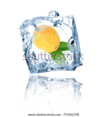 Lemon in ice cube isolated on white - stock photo