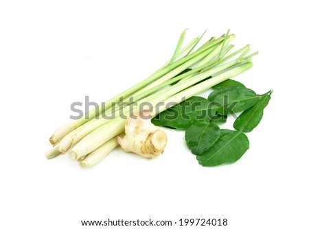 Lemongrass and Kaffir lime leaf isolated on white background - stock ...