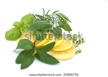 lemons and herbs - stock photo