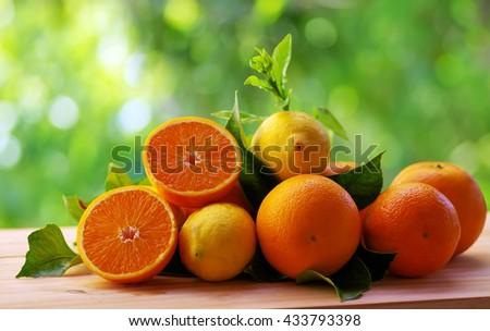 lemons and orange fruits - stock photo