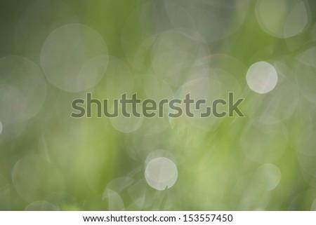lensflare - stock photo