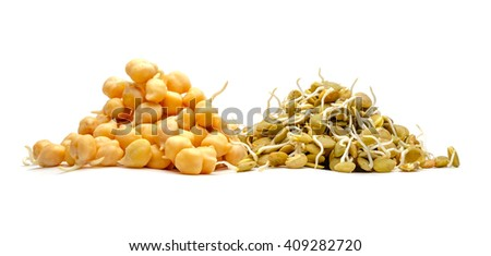 Lentil and chickpeas isolated on white background - stock photo