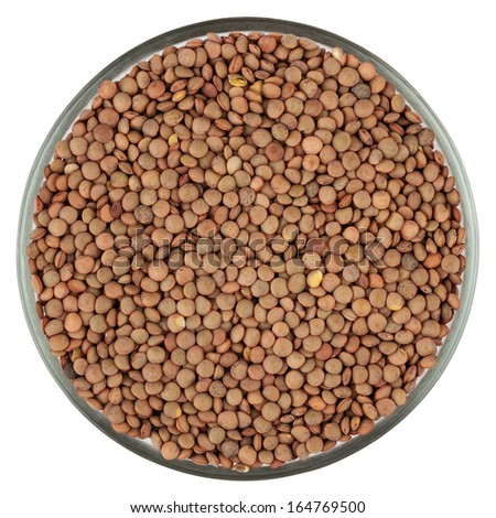 Lentils isolated on white background with clipping path - stock photo