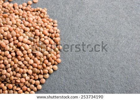lentils (Lens culinaris) on grey background - stock photo