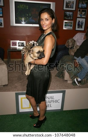 Leonor Varela  at the party to celebrate the 100th Episode of 'Dog Whisperer'. Boulevard 3, Hollywood, CA. 09-17-08 - stock photo