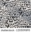Leopard fabric textile - stock photo