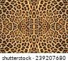Leopard fur background - stock photo
