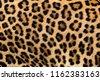 leopard fur texture  real fur
