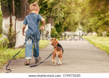 Let's play together! Boy walk with beagle puppy - stock photo