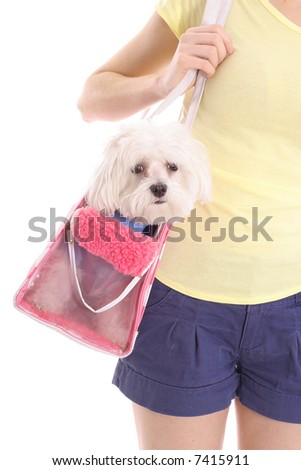 Lets go shopping - stock photo