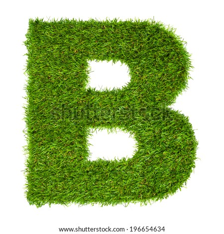 Letter B made of green grass isolated on white - stock photo