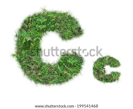 letter C on green grass isolated on over white background