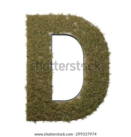 Letter D made of dead grass, growing on wood with metal frame - stock photo