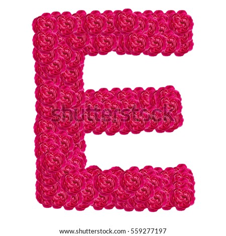 Letter E alphabet with damask rose  ABC concept type as logo isolated on white background