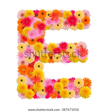 Letter E alphabet with gerbera  isolated on white background   - stock photo