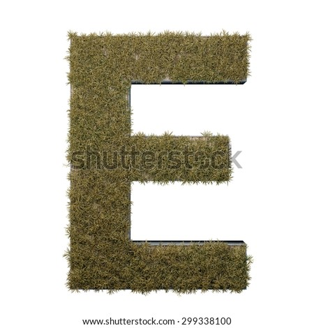 Letter E made of dead grass, growing on wood with metal frame - stock photo