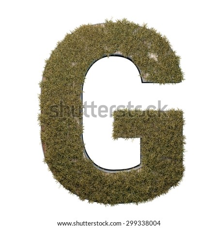 Letter G made of dead grass, growing on wood with metal frame - stock photo