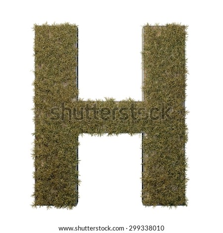 Letter H made of dead grass, growing on wood with metal frame - stock photo